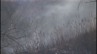 Homeless camp caused fire