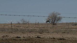 Rural El Paso County