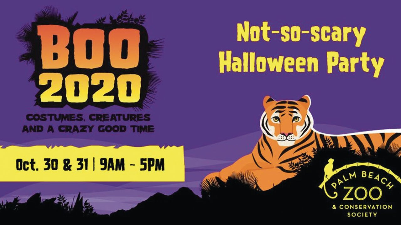 Boo 2020 happening this weekend at the Palm Beach Zoo.