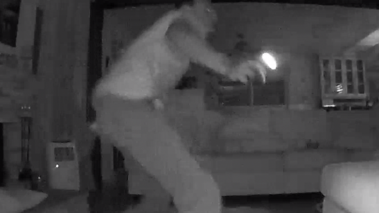 Caught on video: surprise cuts burglary short