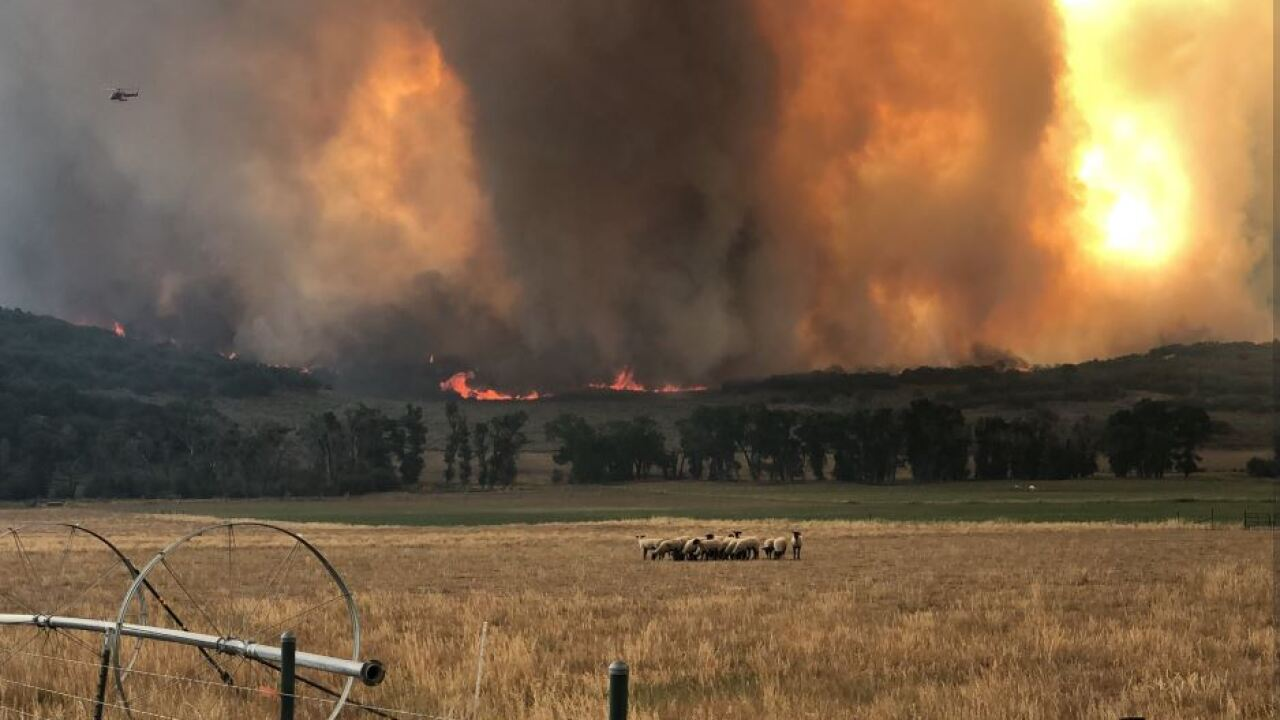 Hilltop Fire burns 1,400 acres in Sanpete County, hundredsevacuated
