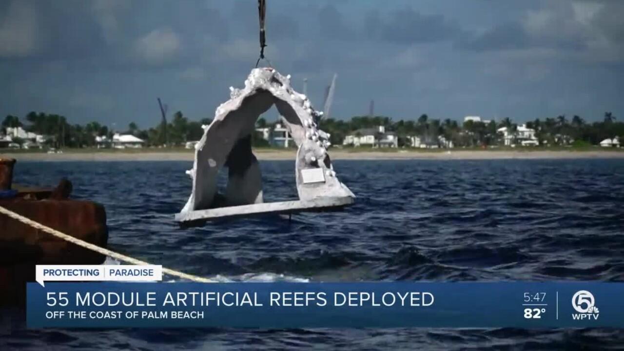 wptv-artificial-reef-palm-beach.jpg