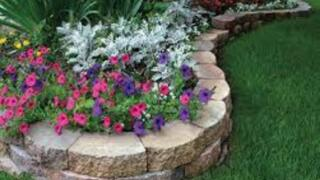 """Menards Home Improvement Topic: """"Fall Planting Ideas and Tips"""""""