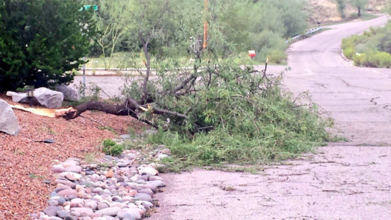 Nogales storm damage