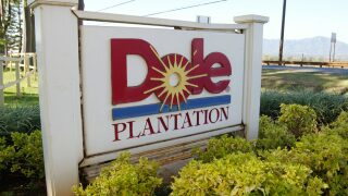 Dole is recalling baby spinach products in 10 states because of possible salmonella contamination