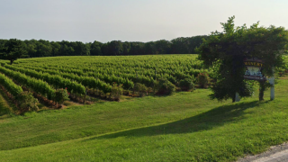 South River Winery