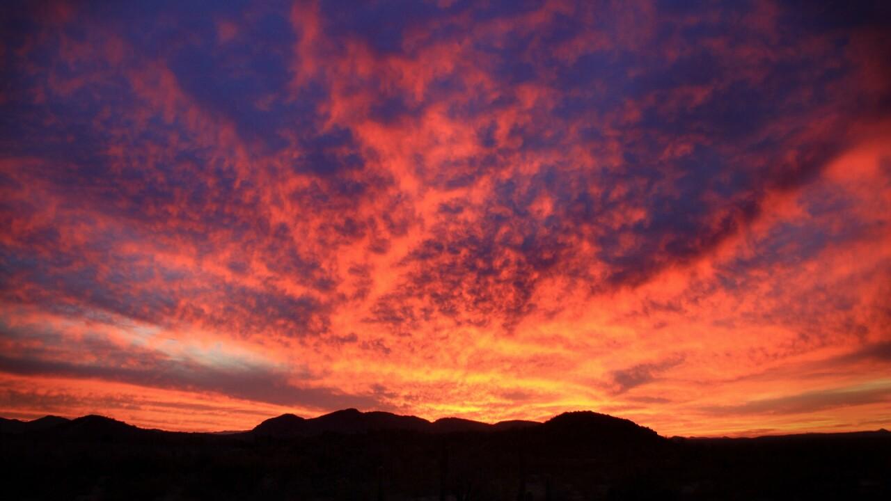 desert-monsoon-4457028_1920.jpg