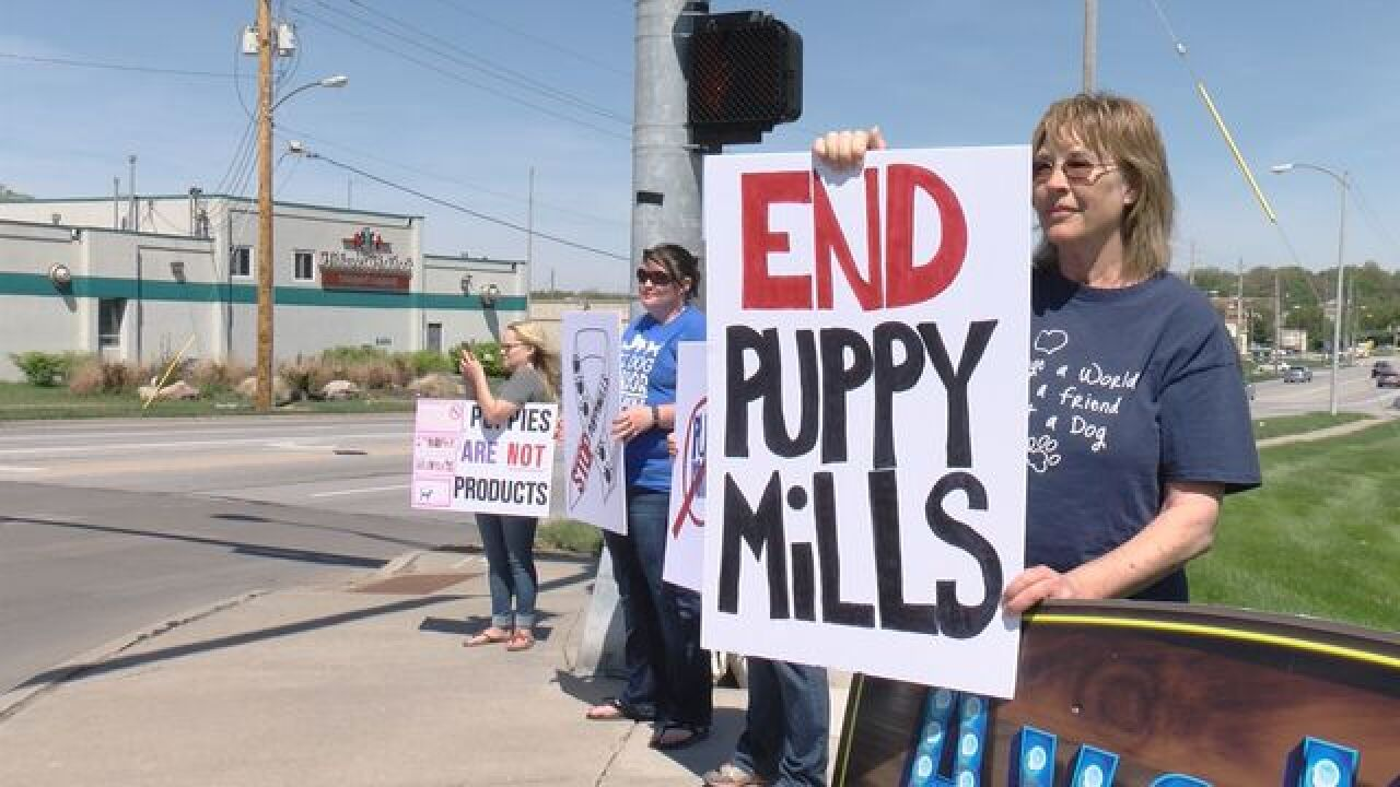 Group Protests Puppy Mills, Pet Stores