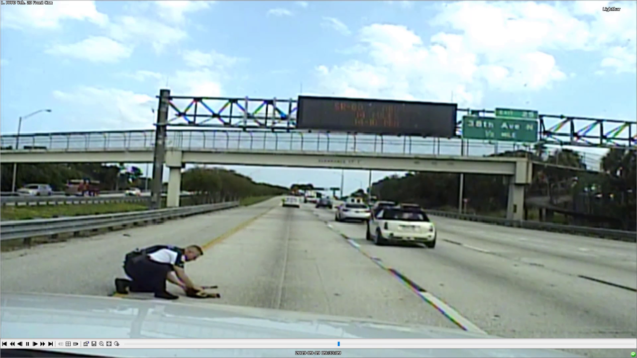 Dash cam captures police officer rescuing dog hit by car on I-275