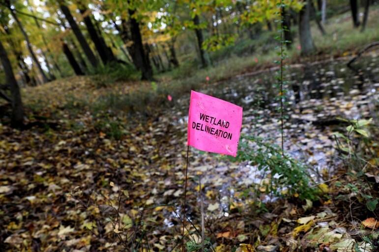 wetlands_flag-771x514.jpg