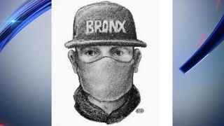 Greenwich village robbery assault suspect