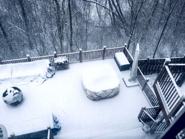 Snowy Saturday in March