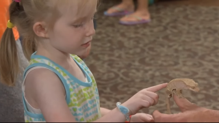 Big Sky Reptile Expo gives Billings kids a show