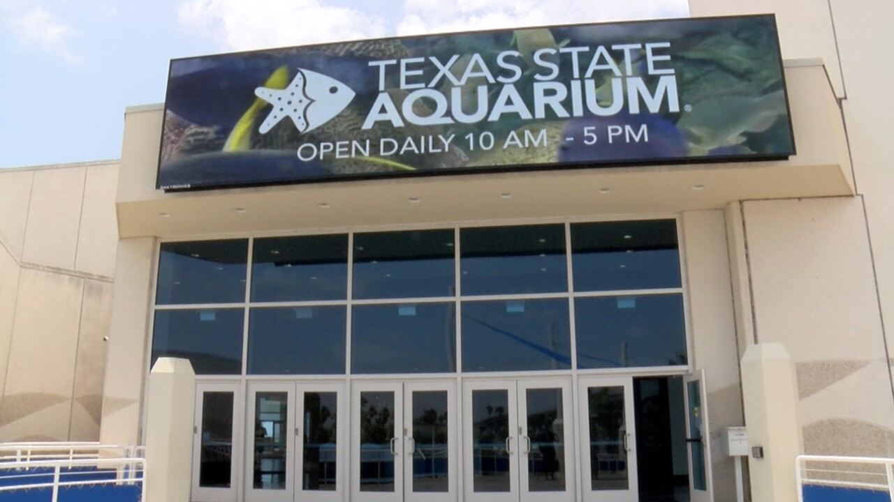 The Texas State Aquarium opened on Friday