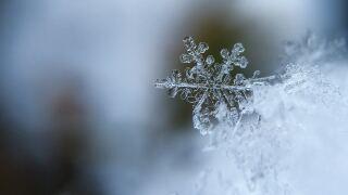 Winter Weather1.jpg