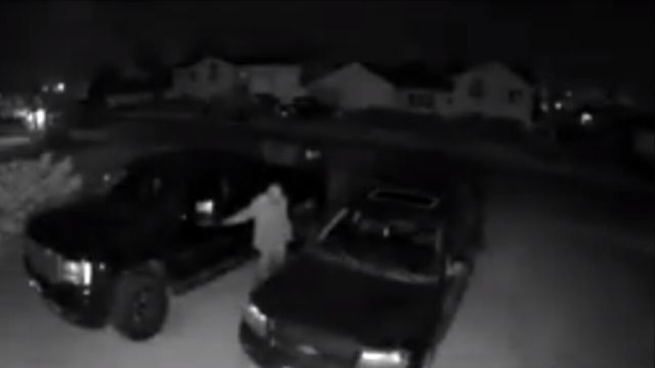 GFPD asks for help identifying Skyline-area thief
