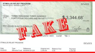stimulus fake check.png