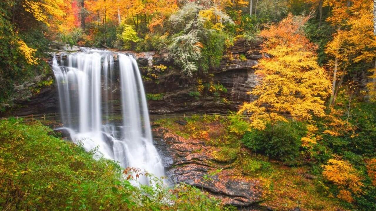 wptv-fall-foliage.jpg