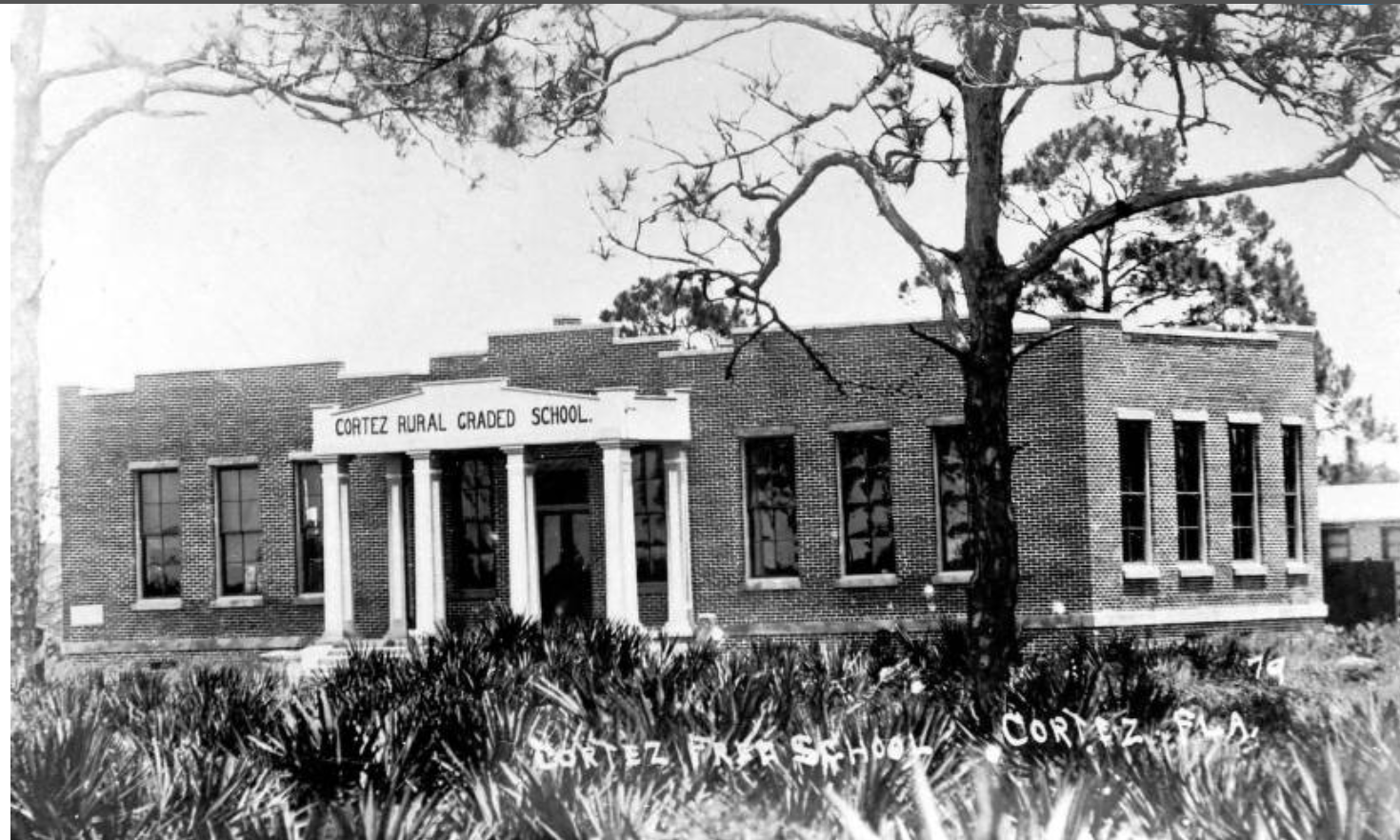 Cortez Manatee County Public Library System 3.png