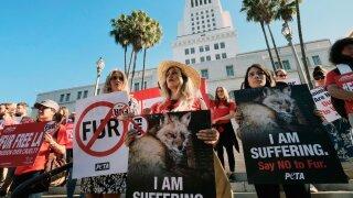 California bans fur products