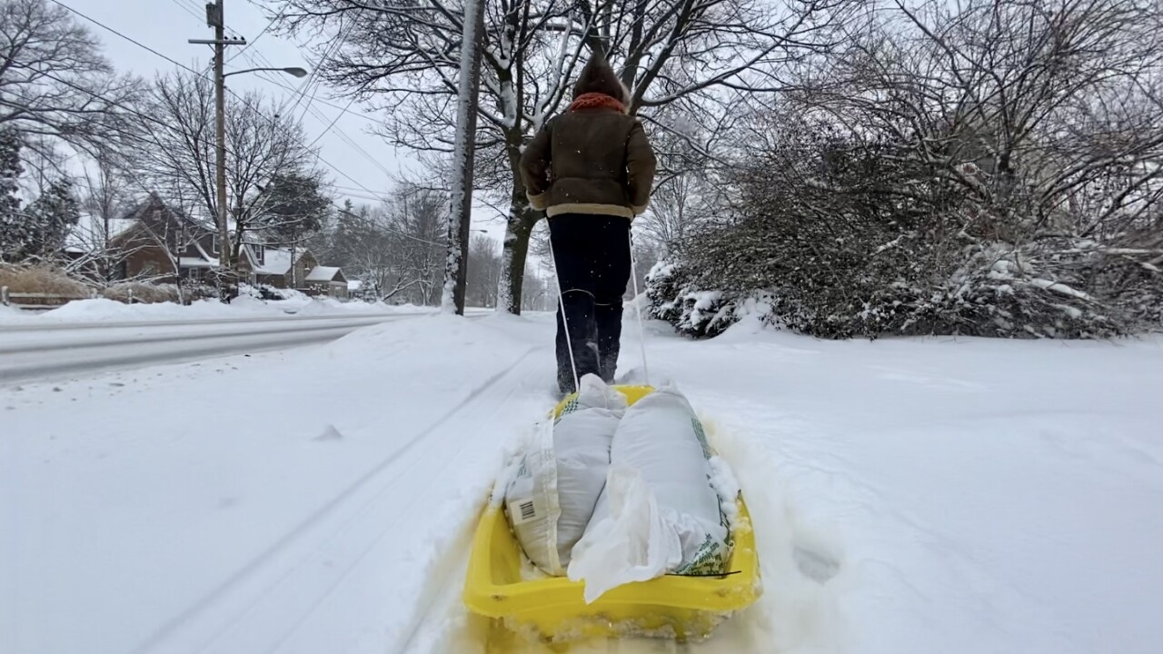 GR Snow digging out sled