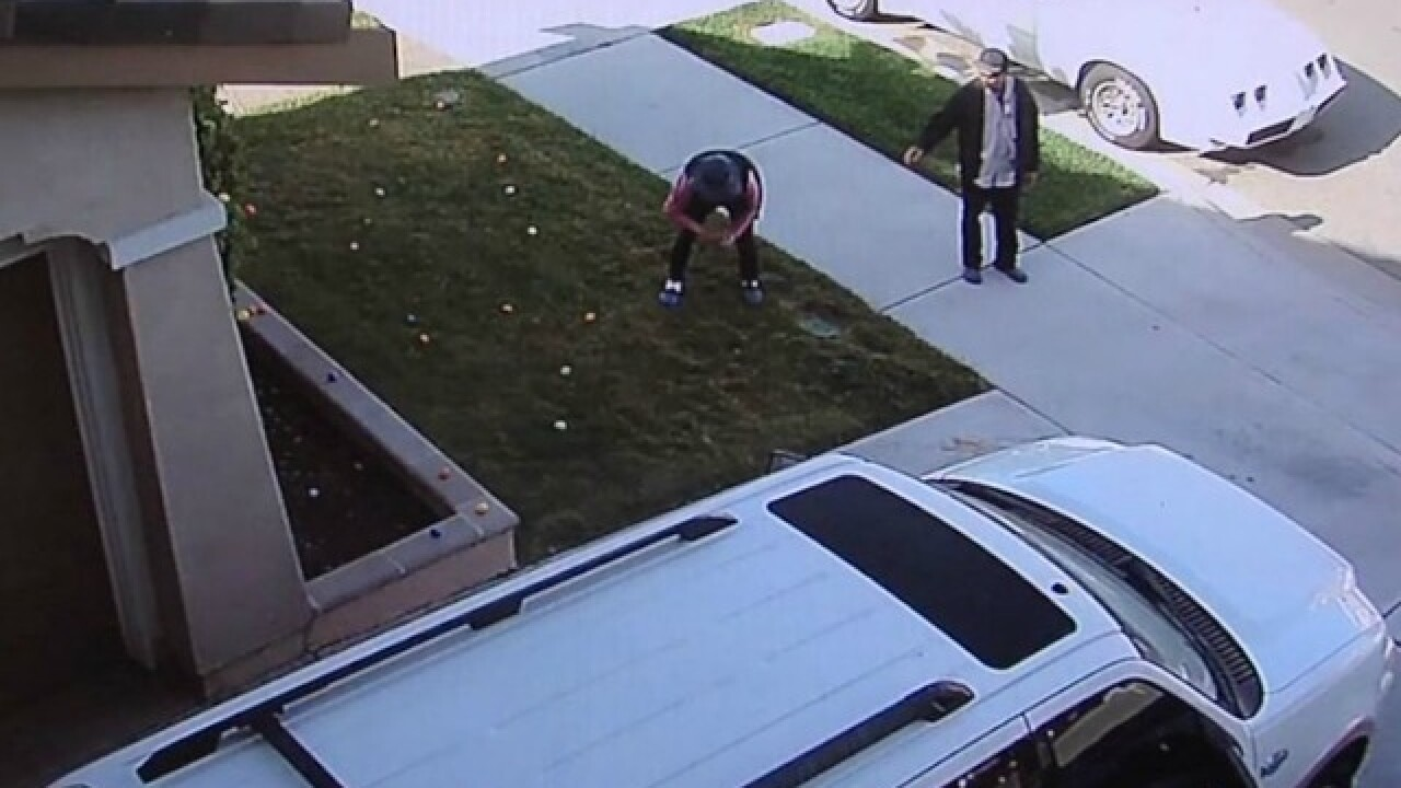 Easter eggs stolen from boy with Down syndrome