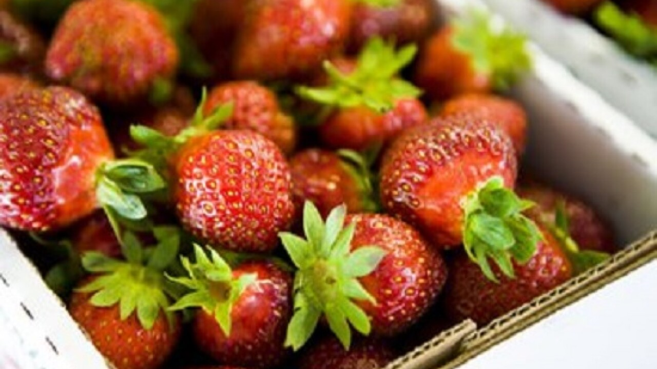 36th annual Pungo Strawberry Festival to take place over Memorial Weekend
