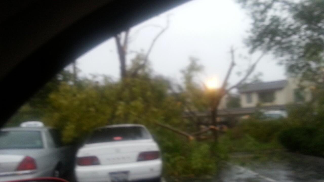 NWS: Not a tornado in Vista or Sabre Springs