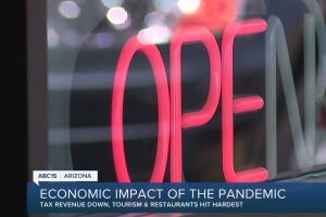 Economic impact of COVID-19 pandemic