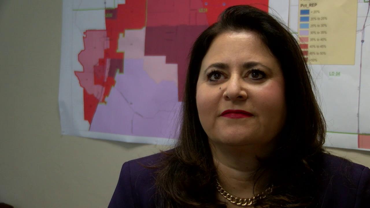 Profile: CD2 candidate Lea Marquez Peterson