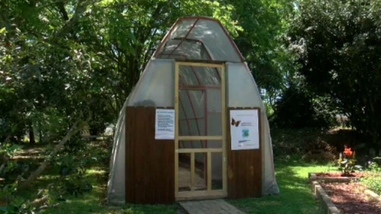 Acadian Village opening monarch butterfly habitat