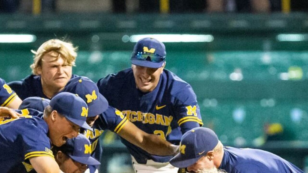 Michigan baseball