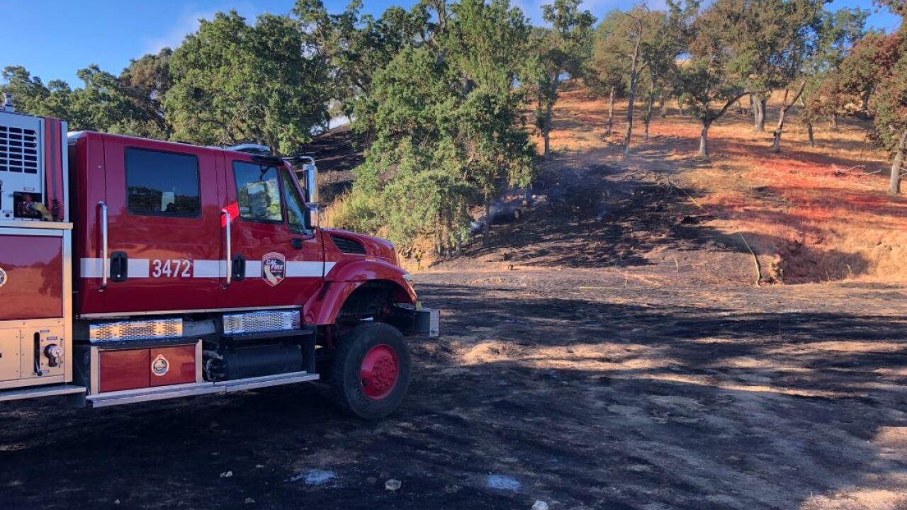 oak fire mop up 2.JPG