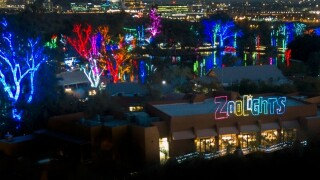 Phoenix Things To Do: 14 events you do not want to miss this week, Nov. 19-25, 2018