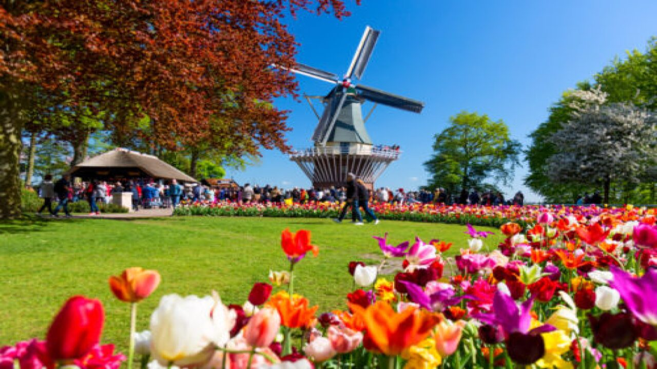 The Netherlands Is Officially Changing Its Name And Will No Longer Be Called Holland