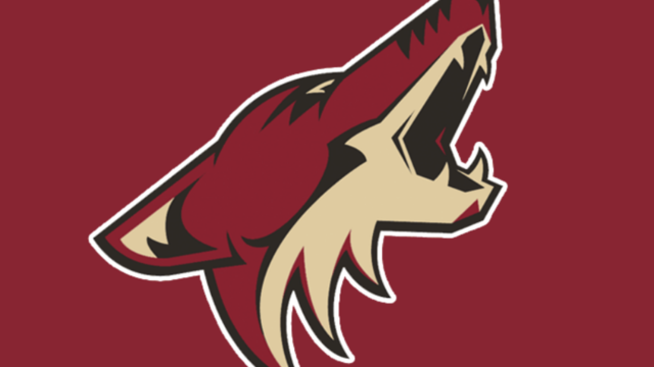 Coyotes to introduce street hockey P.E. curriculum to 700 Arizona schools