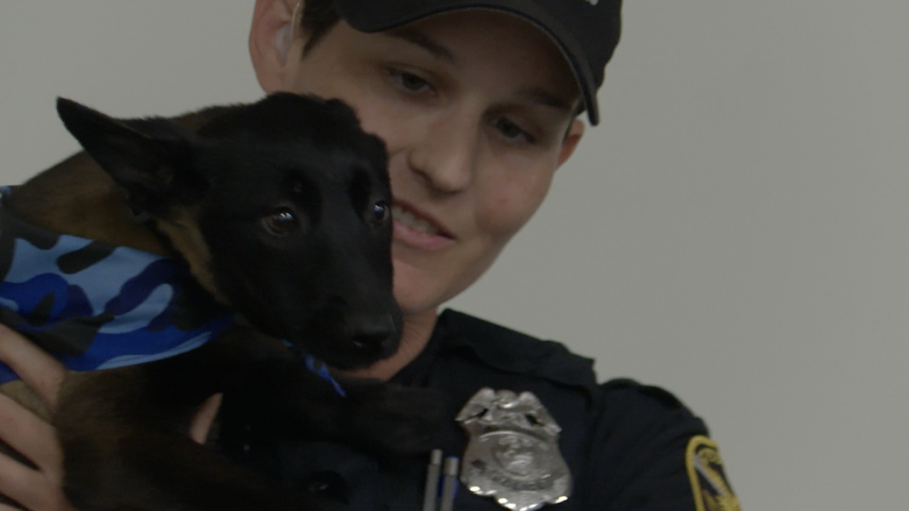 st pete officer recieves puppy (2).png