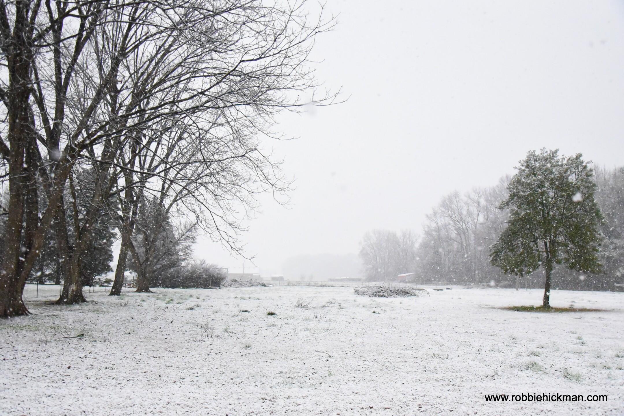 Chesapeake snow from viewer Robbie H.