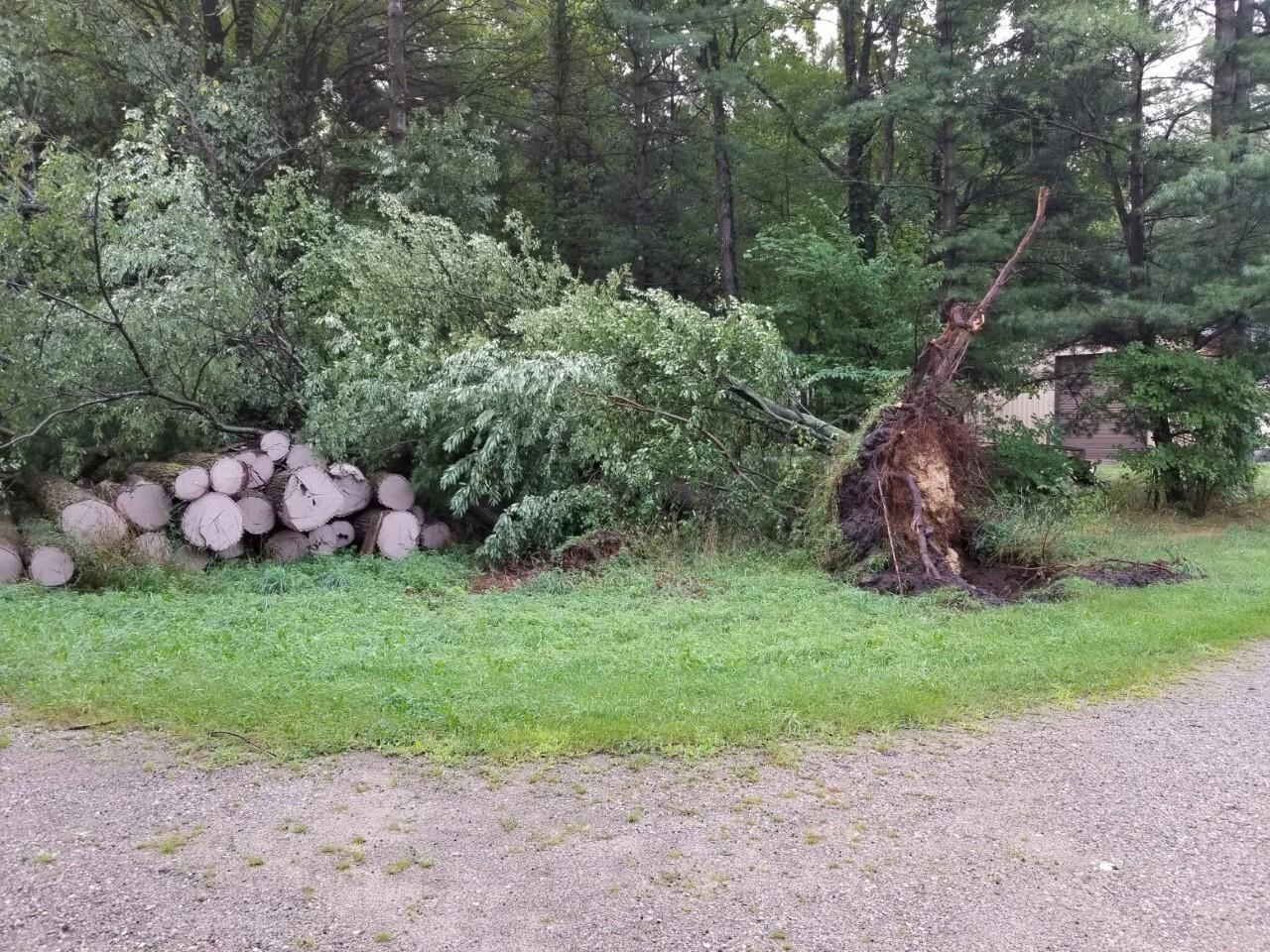 holland storm damage.jpg
