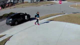 Package Thief Suspect 2