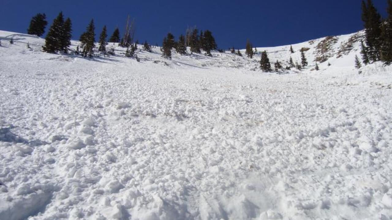 Several avalanches, one fatal, triggered over the weekend