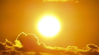 sunny heat generic