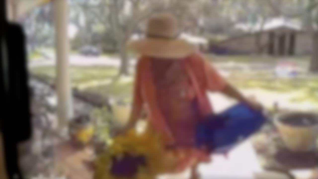 Porch Pirate Granny
