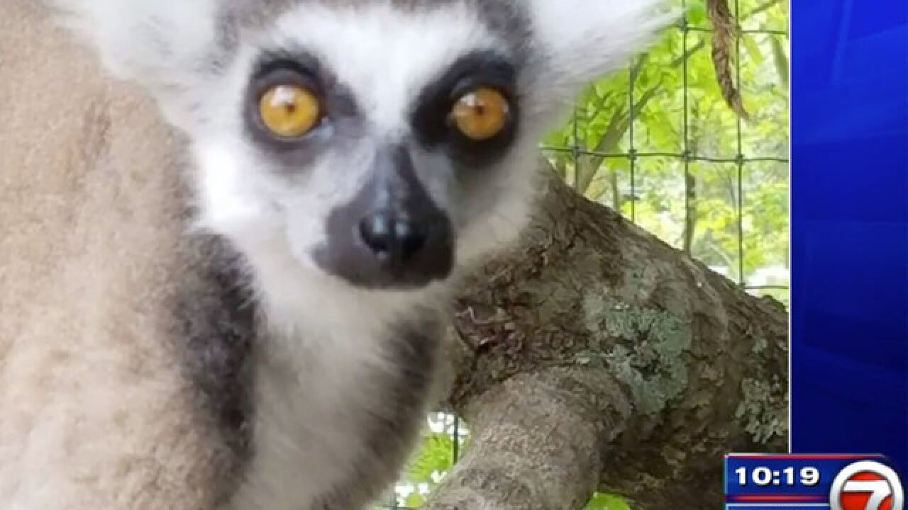 Animals stolen from South Florida wildlife sanctuary