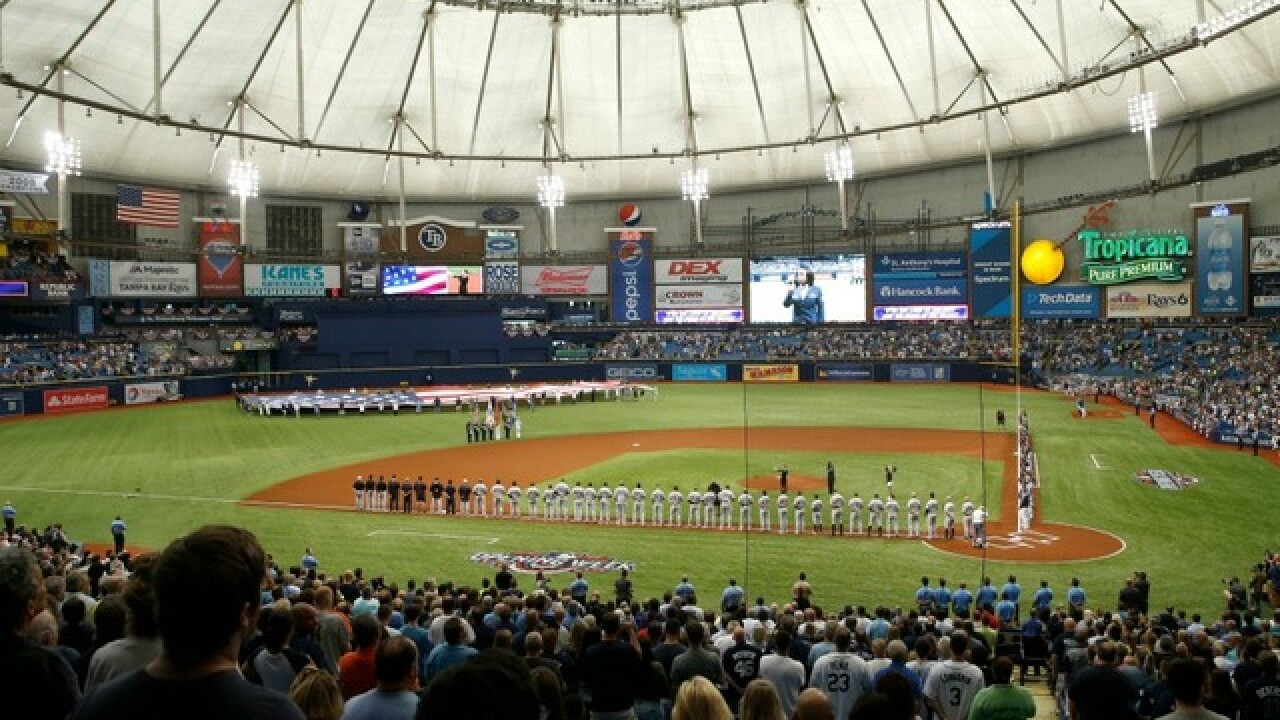 Tampa Bay Rays Fan Fest coming to Tropicana Field