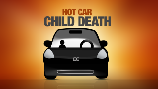 Hot Car Child Death