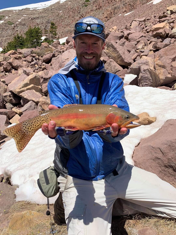 Golden trout.jpg