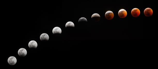 The various stages of Sunday night's lunar eclipse. Courtesy of Hrishikesh Nulkar