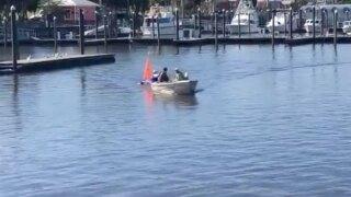 wptv-harbor-branch-algae-boat-.jpg