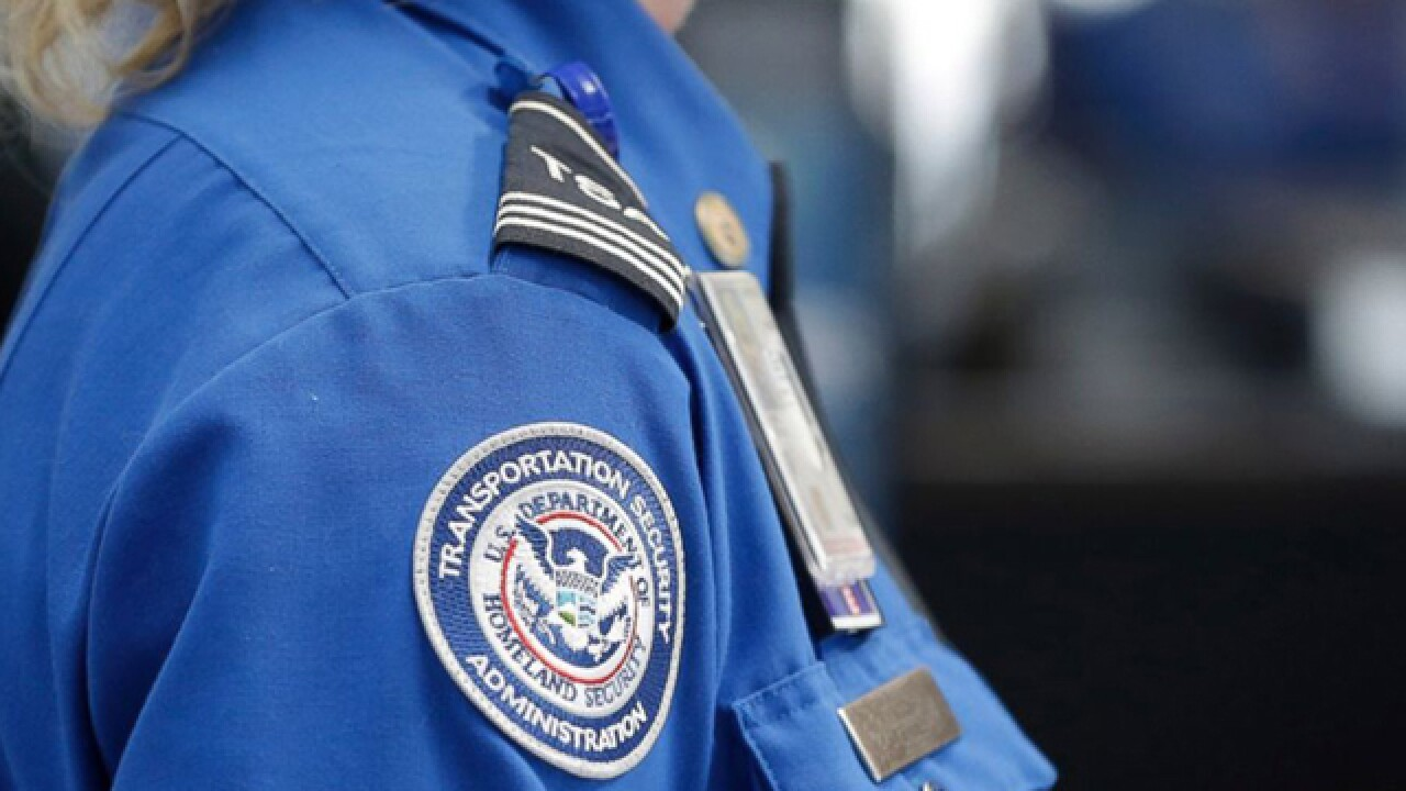 'There will be wait times' at TSA checkpoints